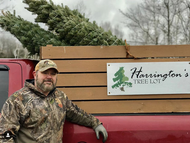 Chris Harrington's father and his two sons are also involved in the tree farm. - HARRINGTON'S TREE LOT (INSTAGRAM)