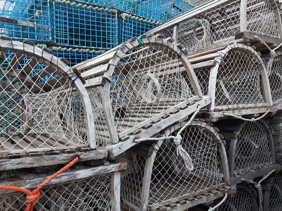 """Lobster traps are required by DFO to have biodegradable panels to prevent """"ghost fishing,"""" if the trap is lost at sea. - STEFAN SINCLAIR-FORTIN"""