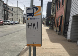 A not-so-serious bus stop, noticed by themaxonlinedotnet on Instagram at the corner of Gottingen and Cornwallis.