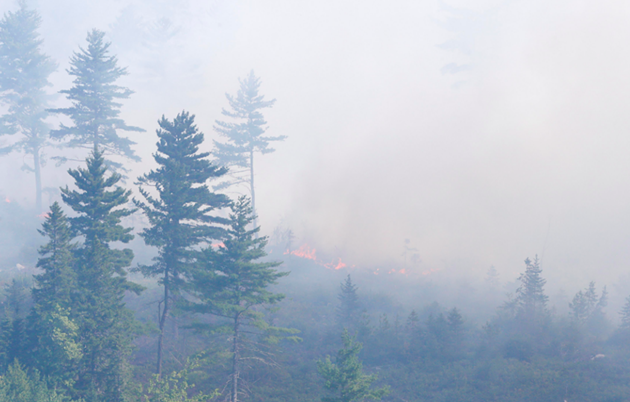 The 350-hectare wildfire currently burning near Seven Mile Lake in Annapolis County. - COMMUNICATIONS NS