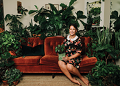 Six student-friendly houseplants that are cheap and easy-to-find