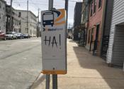 More buses on Gottingen Street bad for business?