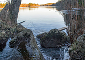 HRM staff recommend purchasing the Purcells Cove Backlands