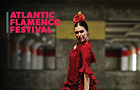 Flamenco Night with Virginia Castro Duran