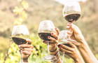 Discover the Wines of Washington Dinner