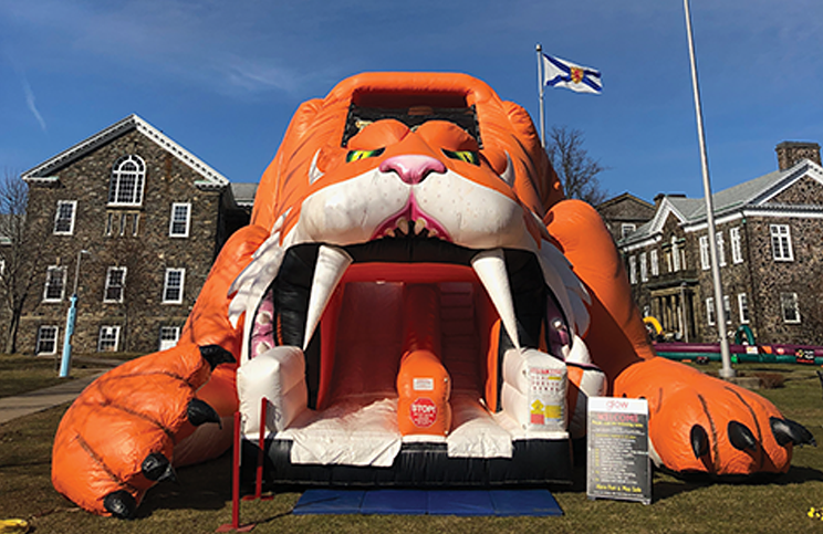 Inflatable tigers need not wear a mask. What would be the fun in that?