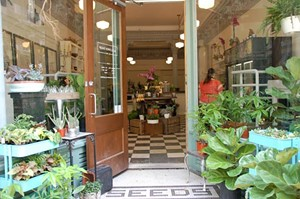 Best Flower Shop, The Flower Shop - ALLISON SAUNDERS