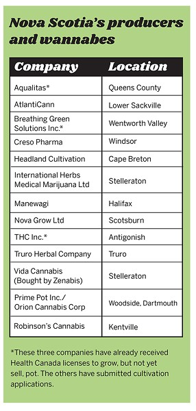 And once a company receives a cultivation license to grow pot, selling it to consumers requires another license.
