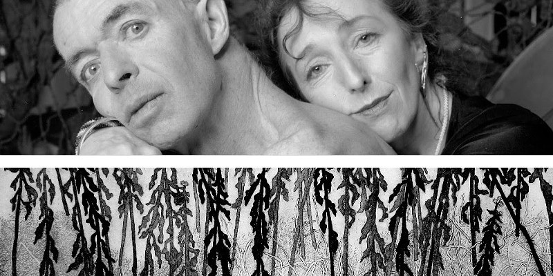 George Steeves, Sublime Camoflage (2006) detail Cecil Day, Winter Goldenrod (2017) detail