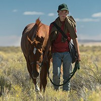 Starsky as Lean On Pete and Charlie Plummer as Charley in Lean On Pete.