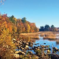 Shubie Park offers a scenic stroll.