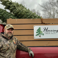 Chris Harrington's father and his two sons are also involved in the tree farm.
