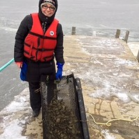 Rebecca Atkinson with a haul of oysters for stout-making