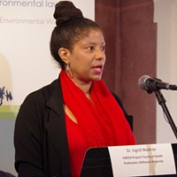 Dalhousie University associate professor and ENRICH project director Ingrid Waldron speaking at Friday's event.