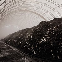 Compost piled high at HRM's organic waste facility.
