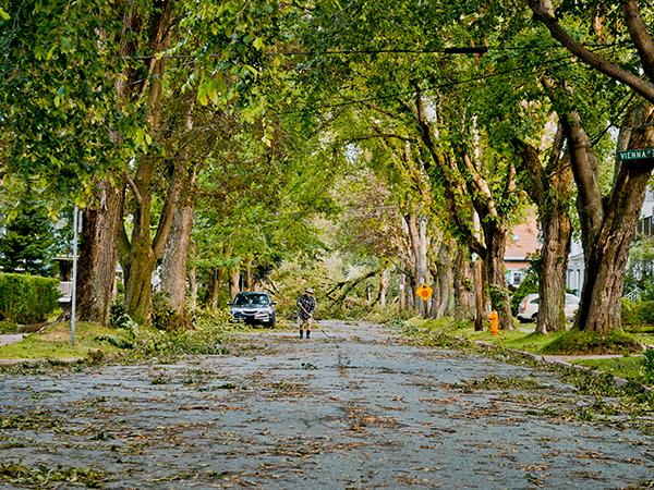 Fallen branches and debris litter Dublin Street after Hurricane Dorian ripped through Halifax. - COREY ISNOR