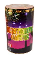 blistering-cactus2---glow.jpg