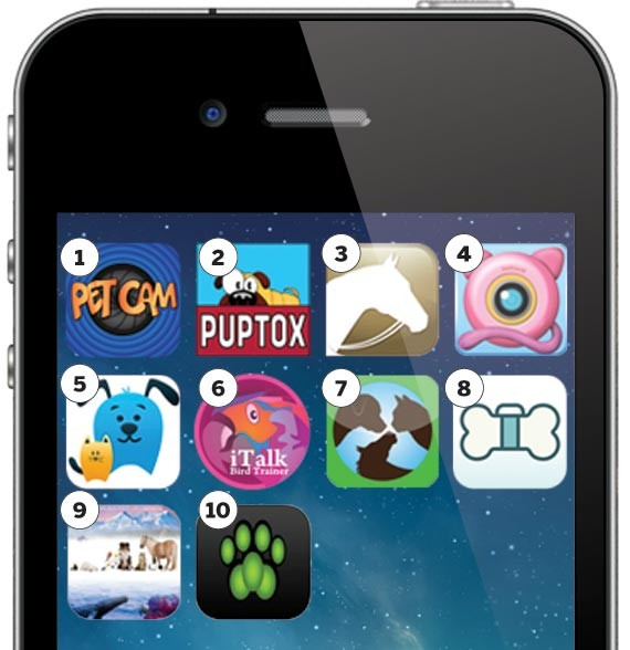 pets_apps1-3e1e1f2e695434d1.jpg