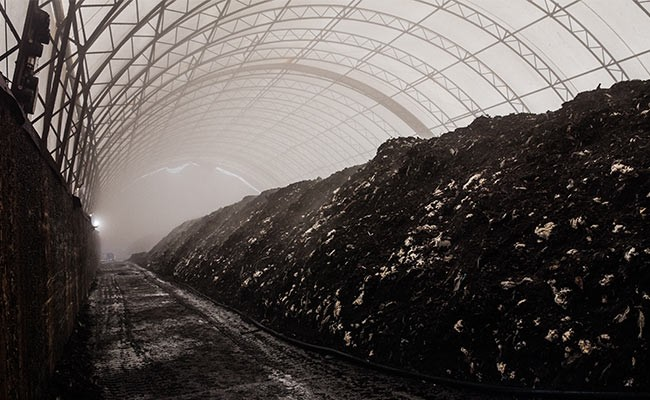 Compost piled high at HRM's organic waste facility. - RILEY SMITH