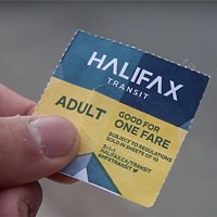 How you can help Halifax Transit make the buses run on time
