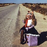 <i>The Muppet Movie</i> screening