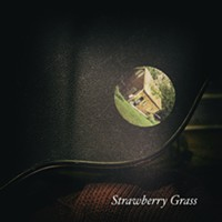 Review: David R. Elliott, <i>Strawberry Grass</i>