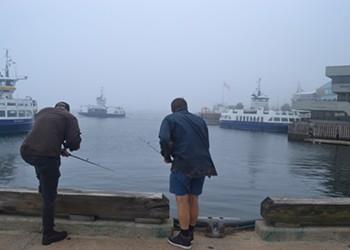 Squid goals: urban fishing in Halifax