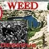 <i>Weed<i>