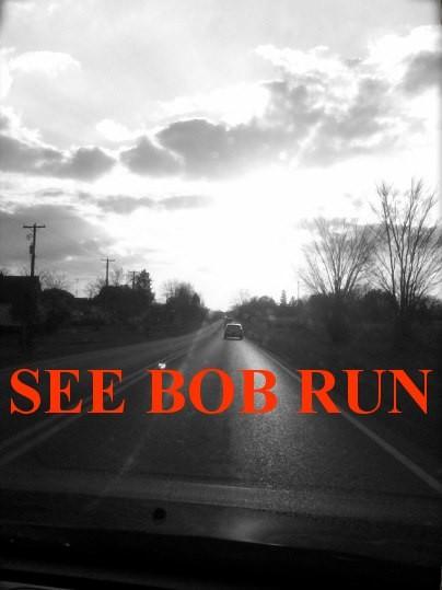 see_bob_run.jpg