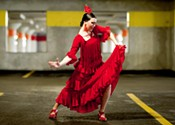 Reconnect to flamenco