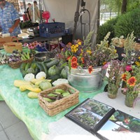 A First-Timer Visits a Farmers Market  Rachel Cabakoff