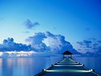 dock_jpg-magnum.jpg