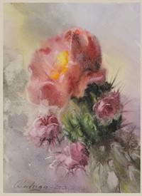 893bc579_cactus_flowers_olga_ludviga.jpg