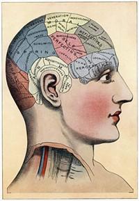 brain44jpg.jpg