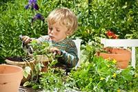 86e1f3b4_little-boy-gardener.jpg
