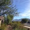 Newcomers Club of Tucson