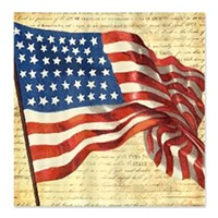 american_flag_consitution_shower_curtain_jpg-magnum.jpg