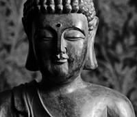 buddha_436_jpg-magnum.jpg