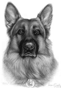 the_dog_people_jpg-magnum.jpg