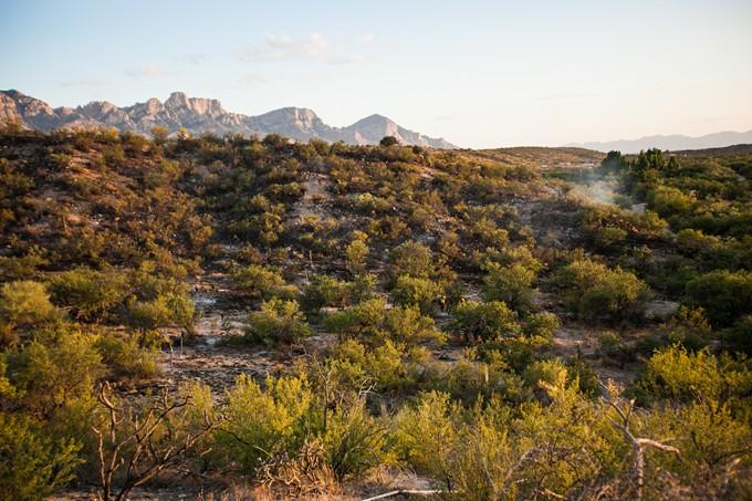 desert.11.jdf.050815.jpg