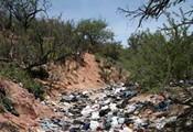 Trashing Arizona