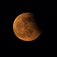 Stay Up to See Sunday's 'Super Blood Wolf Moon'