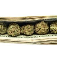 Cash the Crops