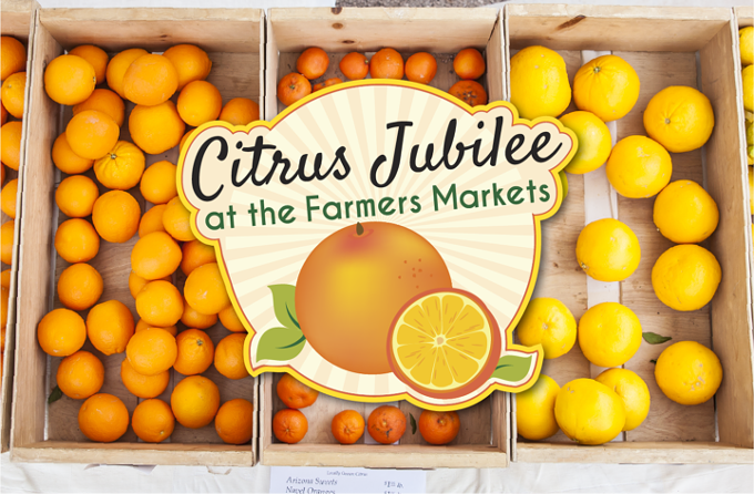 citrus_website_promo_012118-720x472.png