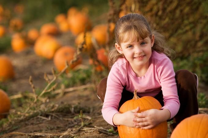 bigstock-pretty-in-the-pumpkin-patch-2221107.jpg