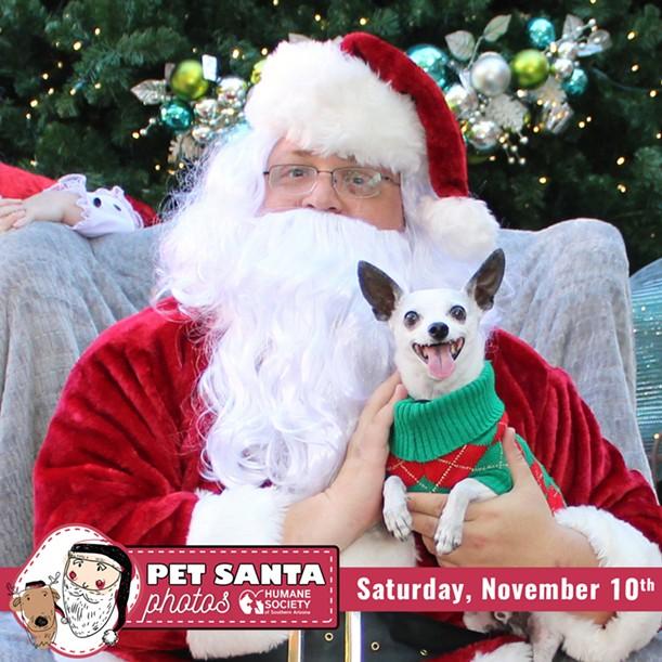 Visit the Humane Society on Saturday, Nov. 10 for Pet Santa photos. - THE HUMANE SOCIETY OF SOUTHERN ARIZONA