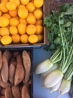 Local food box: Meyer lemon courtesy of Iskashitaa Refugee Network, sweet potato grown at Crooked Sky Farms and Daikon radish from Forever Yong Farm. - PIVOT PRODUCE