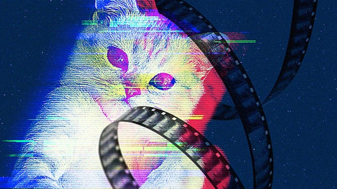 The Cat Video Fest 2019 - COURTESY