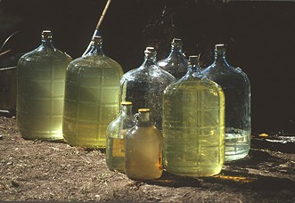 Small bacanora producers share their mezcal without any fancy labels. - BILL STEEN