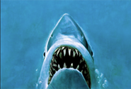 jaws.png